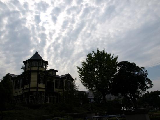 PA172008-16.jpg
